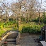 winnington road garden 1